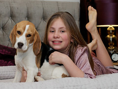 Alice & Flossy (kerrywho) Tags: dog cute beagle dogs girl puppy furry child canine tucker beagles flossy girlanddog