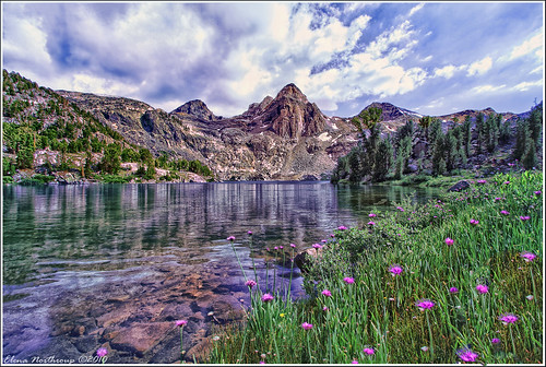 kings canyon national pk single mature ladies Home - welcome to toshiba - toshiba's start experience including trending news, entertainment, sports, videos,  takeaways from the us national soccer team win.