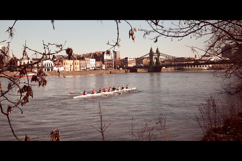 Rowers on the River Thames at Hammersmith