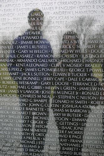 Reflections in Vietnam Memorial
