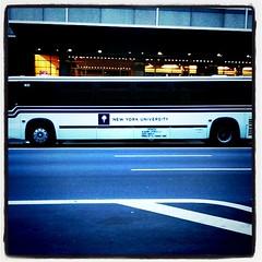 81/365 - NYU Bus
