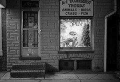 (patrickjoust) Tags: street leica city urban bw usa white fish black blancoynegro film home birds animal animals shop night analog america 35mm point us stuffed md focus mechanical kodak thomas f14 cosina united voigtlander trix north steps maryland rangefinder baltimore 1600 400 fells fox push 40 a1 states manual 40mm crabs process m3 13 range finder developed premium nokton cv wetzlar develop estados xtol taxidermist blancetnoir unidos leitz formstone arista rebranded schwarzundweiss autaut voigtlandernokton40mmf14mc rebadged
