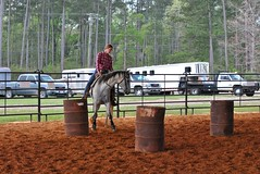 Clinton Arena Horse Show 8/30 (Marsh, D.) Tags: show horse woman phoenix lady nikon louisiana barrels clinton gray arena trail riding western poles rider equine equus quarterhorse placed participating greymare d3000 deesnke marshd