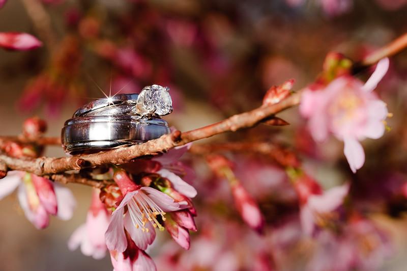 RingsBlossom