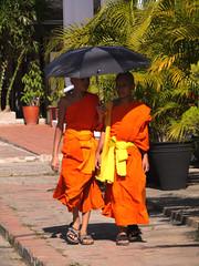 Luang Prabang Monks (Larterman) Tags: travel people asian temple asia seasia southeastasia buddha buddhist monk unesco worldheritagesite monastery monks temples laos mekong luangprabang royalpalace luang prabang alms namkhan monasteries travelphotography travelphotos awkphansao awkwatsa