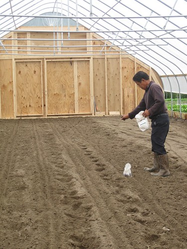 Pa Thao, a Hmong farmer at Flats Mentor Farm, plants Asian crops in a high tunnel put in place with NRCS assistance.