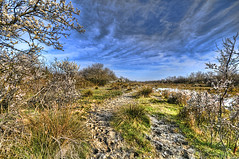 Trail (Uros P.hotography) Tags: trip travel sea italy horse france tourism nature beautiful birds fauna photoshop mouth wonderful river nice fantastic flora nikon perfect italia tour mud natural superb awesome famous reserve sigma lagoon tourist glorious journey swamp stunning excellent migratory marsh mm lovely della striking incredible karst 1020 unforgettable brilliant hdr breathtaking extraordinary aweinspiring adriatic isonzo remarkable monumental isola stupendous camargue turism memorable d300 exceptional turist kras cona photomatix acclaimed 80300 brathtaking slod300
