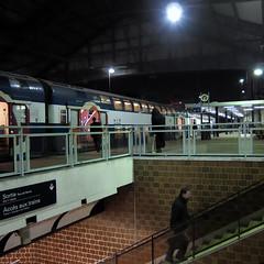 Saint Lazare #30 (philoufr) Tags: paris station night stairs train square escalator quay nuit quai escalier sncf carré garesaintlazare canonpowershots90