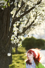 day185 (rainflies) Tags: trees selfportrait laughing hair happy spring wind sunny 365 dogwood day185 365project 185365