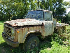 International Harvester pickup (Madam48) Tags: truck rust pickup ih internationalharvester