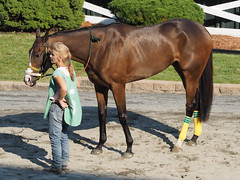 Miss Wilby (avatarsound) Tags: boston suffolkdowns horse horseracing jockey race racetrack racing
