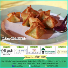 Crispy fried food dish (ChoukiDhani) Tags: food foodie foodlover tasty healthy delicious crispy goldenbrown fried party celebration specialevents crunchy alluring best fooddishes resort hotel motel restaurant