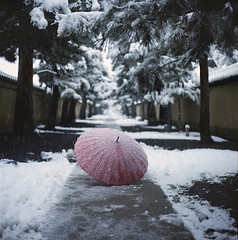 Umbrella (yocca) Tags: red snow film topf25 umbrella t temple kyoto kodak 100v10f hasselblad   2010  500cm carlzeiss daitokuji portra400  plannar dec2010