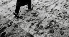 It begins...  again... (syphlix) Tags: nyc blackandwhite snow eastvillage newyork feet footprints crosswalk blizzard