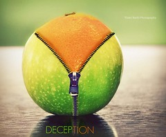 Misrepresentation (Violet Kashi) Tags: orange macro reflection green apple kitchen fruits sepia photoshop table dof deception naturallight manipulation disguise zipper grannysmith hmm picnik trickery cs5 macromondays