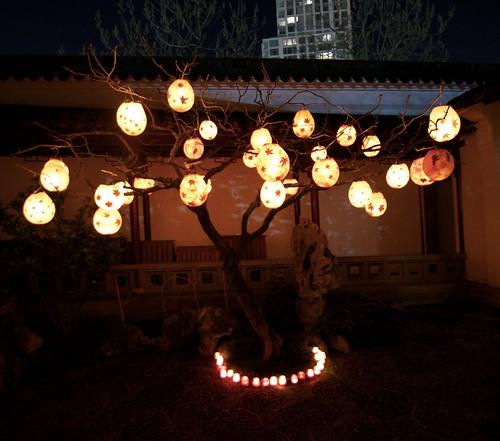 Lanterns @ Dr. Sun Yat-Sen Chinese Garden