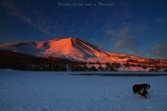 Mt.Asama in morning red (waltersoluh) Tags: sky cloud dog mountain snow nature sunrise landscape dawn 1001nights winterscape mtasama theunforgettablepictures doublyniceshot magicunicornverybest magicunicornmasterpiece tripleniceshot mygearandme mygearandmepremium mygearandmebronze mygearandmesilver mygearandmegold mygearandmeplatinum mygearandmediamond dblringexcellence artistoftheyearlevel4 aboveandbeyondlevel1