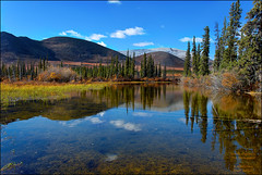 The North Ogilvie Mountains (kdee64) Tags: september arctic yukon treeline dempsterhighway beringia northernyukon northogilviemountains autumncoloursofthedempster
