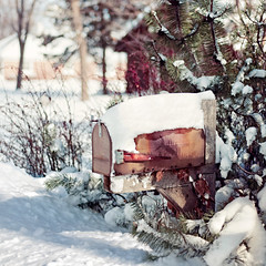 I've been standin' here waitin' Mister Postman (pixelmama) Tags: winter snow mailbox evergreens postbox february blizzard pinetrees gettyimages hss hsm themarvelettes pixelmama sliderssunday soundtrackmondays chicagosnowmageddon ivebeenstandinherewaitinmisterpostman