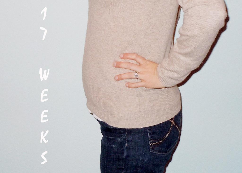 2-3-2011 17 Weeks1