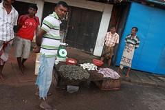 - Bentota, salesmen of shrimps - (dcem) Tags: market srilanka salesmen shrimps urbain bentota serendib ceylan 400d canonefs1855mm3556