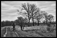 Hoe sterk is de eenzame fietser / How strong is the lone rider (Bert Kaufmann) Tags: blackandwhite bw holland netherlands bicycle cyclist zwartwit nederland lone lonely nl rider fahrrad hdr olanda roermond limburg fiets niederlande radfahrer eenzaam fietser ool remunj merum hoesterkisdeeenzamefietser isabellegreend isabellagreend