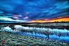 Onrushing night (Kansas Poetry (Patrick)) Tags: lawrencekansas bakerwetlands wakarusawetlands patricklovenancywholovesplantingflowers