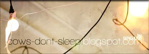 blog header/banner 2