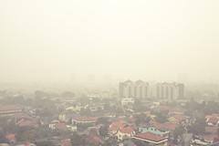 Color of Jakarta 2