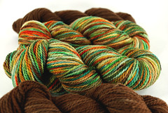 """Orchard Harvest"" Mountain Meadow Wool"