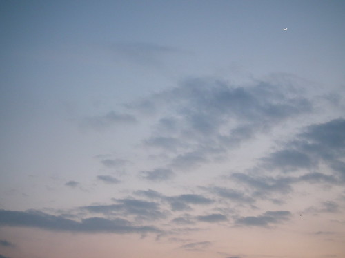 Crescent moon in March sky