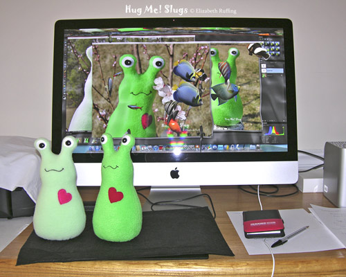 Light mint green and medium green fleece Hug Me Slugs by Elizabeth Ruffing in front of my iMac