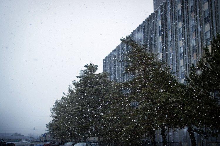 03-08-snow2