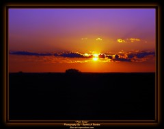 ~Pure Texas~ (Butterfly724) Tags: sunset sky orange sun beautiful field clouds landscape texas purple dusk beam fade layers picturesque soe goldenhour blend bej anawesomeshot brillianteyejewel betterthangood goldstaraward goldstarawardgoldmedalwinner miasbest bestofbeautiful