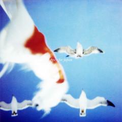 (masaaki miyara) Tags: japan polaroid sx70 boat earthquake flag  donation  tohoku  landcamera  nationalflag   600film northernjapan    prayforjapan  miyagipref   donationjp pleasedonateforjapanearthquake pleasehelpsupportus  tohokuareapacificcoastearthquake