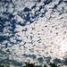 Chandler sky
