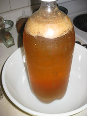 2011 03 17 Ginger Beer 005