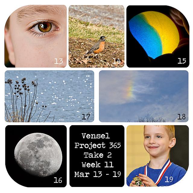Week-11-Collage