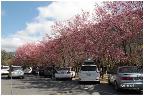 2011-03-04 陽明武陵 187 r
