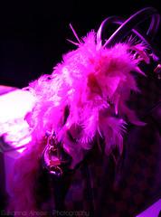 "Fuxia Power (susy ♥) Tags: pink kiss drink postit lips baci bologna evento flashmob passione sixpencenonethericher baciami disaronno cosmoprof fuxia epassion ethosprofumerie ""kissme"""