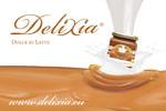 LogoDeliXia2011 jpg(2)
