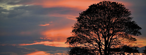 Sunset In Northumberland