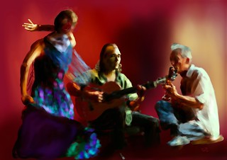 The Flamenco and the Guitarists