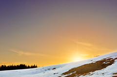 Where do you think you're going?! (Sergei-P) Tags: winter sunset sky sun snow cold color yellow oslo norway photoshop iso100 nikon warm hill lightroom 1755 19mm f13 mortensrud