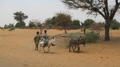 West Africa-2517
