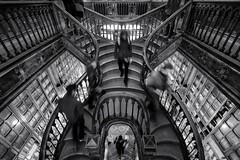 Lello & Irmo (Antnio Alfarroba) Tags: stairs porto bookshop oporto escadas lello livraria escaliers lelloirmo