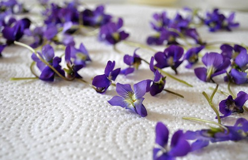 Pretty purple violets...