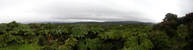Chiloé Panorama 5