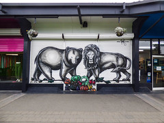 The Bear and Lion (Steve Taylor (Photography)) Tags: bear lion wongi wilson vegetables fruit pumpkin cabbage cauliflower apple grapes carrots hanging basket shutter easle gallery closed art animal artwork graffiti mural streetart shop blackandwhite newzealand nz southisland canterbury christchurch newbrighton