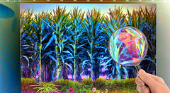 Processing the Corn Field (byzantiumbooks) Tags: cornfield imageprocessing magnifyingglass
